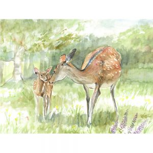 SG1523 dear pair woodland forest wild stag nature animal animals paint painting watercolour