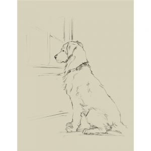 SG1581 waiting for master IV dog sketch drawing study lineart