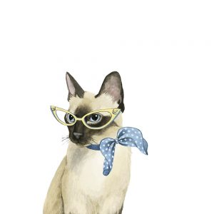SG1586 cool cat II cat feline lady glasses scarf 1950s illustration