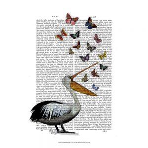 SG1618 pelican butterflies pelican bird sea bird butterfly book type writing typography illustration