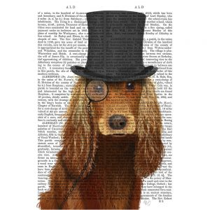 SG1642 cocker spaniel formal hound dog top hat monocle watercolour novel type writing typography funny whimsical