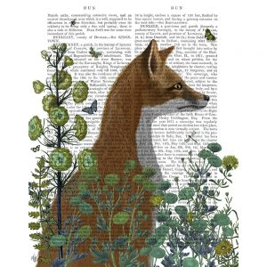 SG1644 fox red nature animal wild flora botanical writing novel book typography butterflies