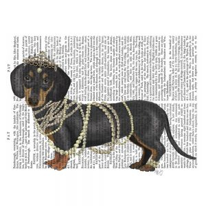 SG1665 dachshund pearls tiara jewels jewellery feminine nature dog type novel book writing typography lady painting illustration quirky whimsical