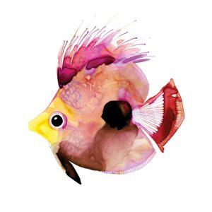 SG1767 tropical angel fish pink purple colourful