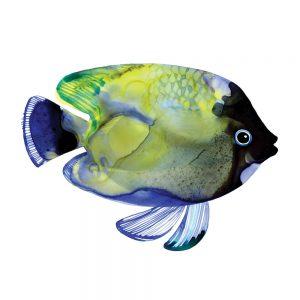 SG1768 tropical fish green blue navy colourful