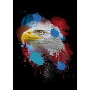 SG1839 eagle birds prey fly wings beak colour splash ink illustration animals