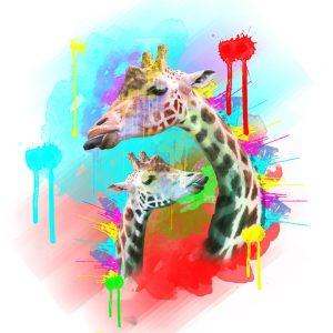 SG1840 giraffe animals calves vibrant colourful colour splash