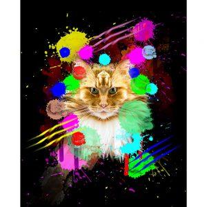 SG1853 feline cats graphic illustration vibrant colourful colour splash