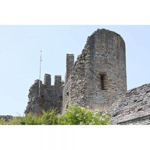SG1985 dudley castle england