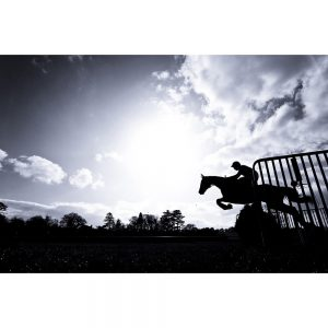 SG2016 race horse jumping hurdle silhouette