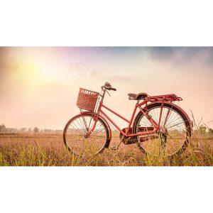 SG2051 bicycle pink landscape sunset vintage