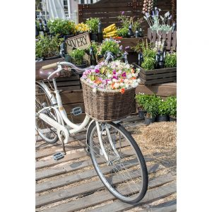 SG2095 bicycle pink flowers garden