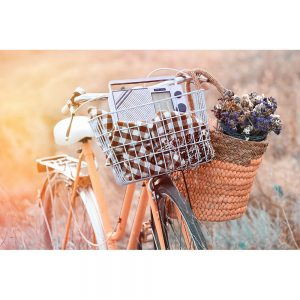 SG2156 bicycle basket flowers meadow retro