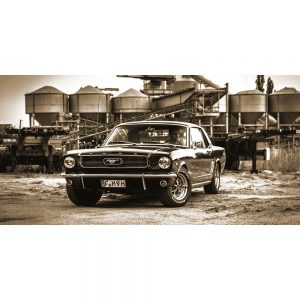 TM1312 automotive american cars mustang sepia