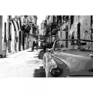 TM1373 automotive cuban cars mono