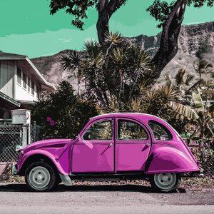 TM1403 automotive classic cars pink