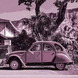 TM1404 automotive classic cars purple