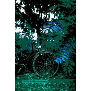 TM1554 bicycles classic green