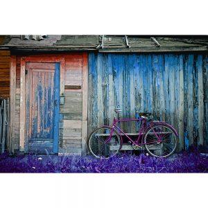 TM1556 bicycles classic shack magenta