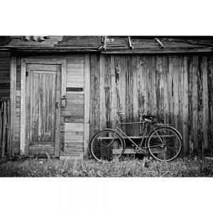 TM1557 bicycles classic shack mono