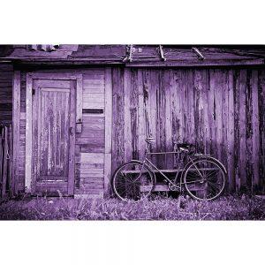TM1559 bicycles classic shack lilac