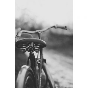 TM1565 bicycles classic saddle mono