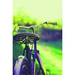 TM1567 bicycles clasasic saddle green