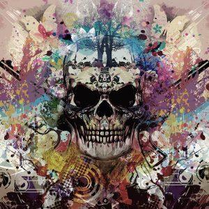 TM2011 skull graphic grunge art