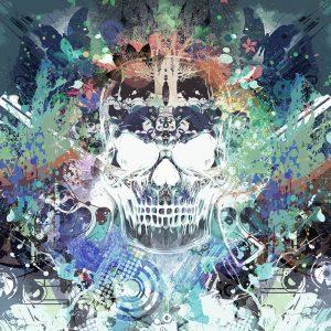 TM2012 skull graphic grunge art