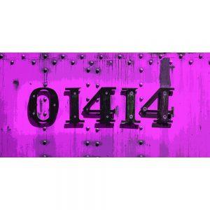 TM2319 numbers on train pink