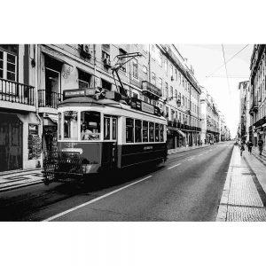 TM2322 tram on street mono