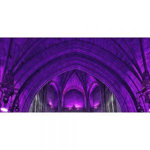 TM2764 liverpool catherdral interior purple