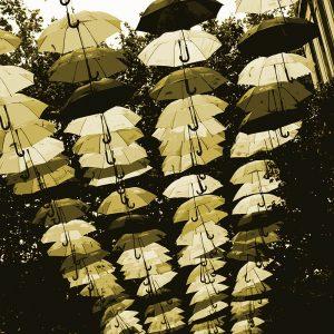TM2782 liverpool street umbrellas cream