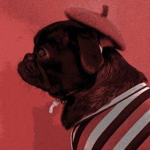 TM2854 dog hat coat light red