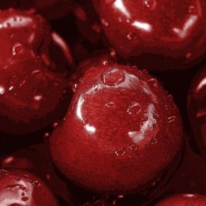 TM2869 cherries fruit detail bright red