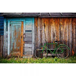 TM2913 bicycle bike old shack green