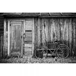 TM2914 bicycle bike old shack mono