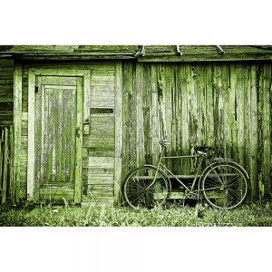 TM2915 bicycle bike old shack bright green