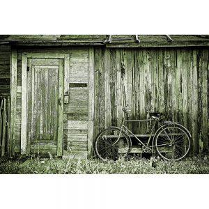 TM2916 bicycle bike old shack light green