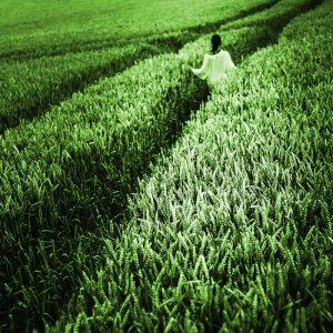 TM2923 girl crops path bright green