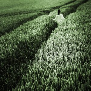 TM2924 girl crops path light green