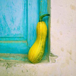 TM2955 yellow vegetable door