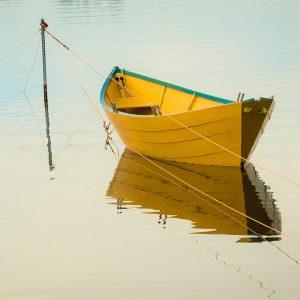 TM2965 yellow rowing boat