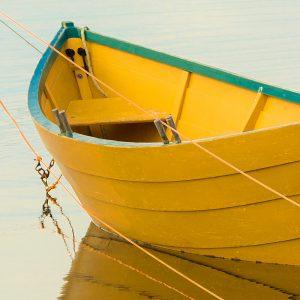 TM2966 yellow rowing boat detail