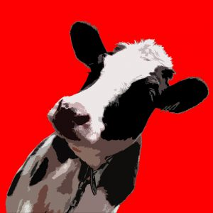 SG2596 popart cow graphic animal illustration