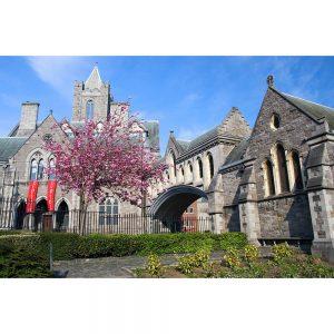SG2968 christ church cathedral dublin ireland