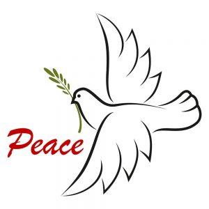 SG3107 peace dove olive branch keyline